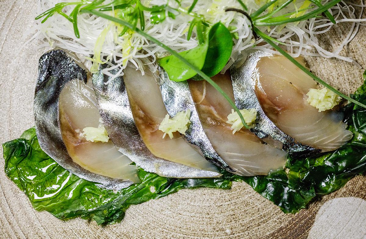 Sashimi of Atlantic Mackrele